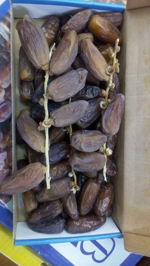 Kurma Tunisia Tangkai Palm Fruit