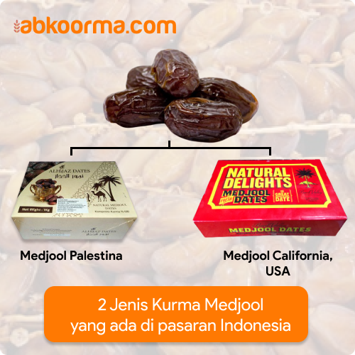 Jenis kurma medjool di Indonesia