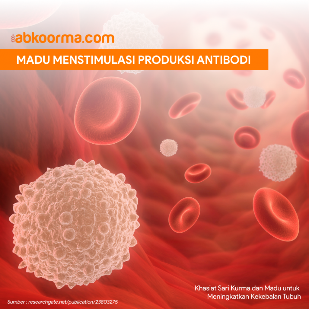 Madu mampu menstimulasi produksi antibodi dalam tubuh
